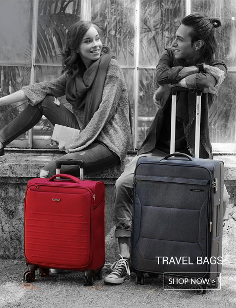 travel bags, briefcases
